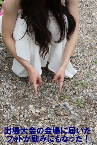 白山白川郷ホワイトロード (9)