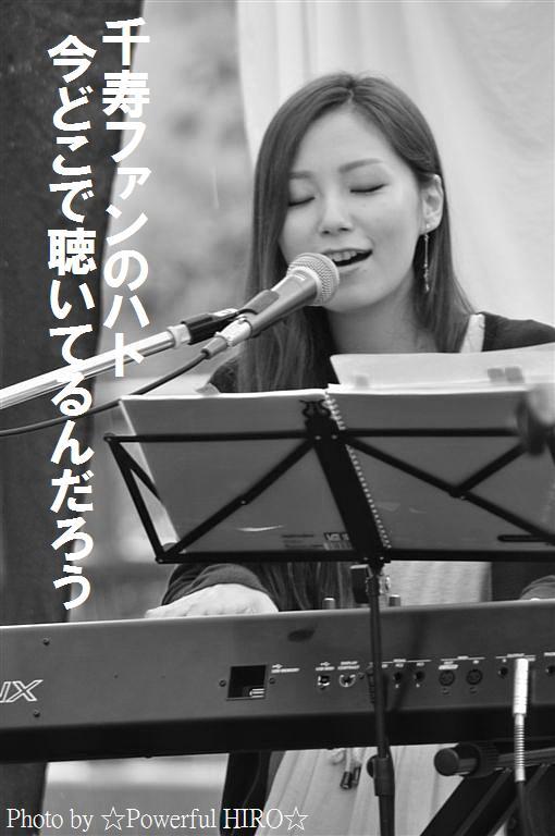 絶景カフェライブ (42)
