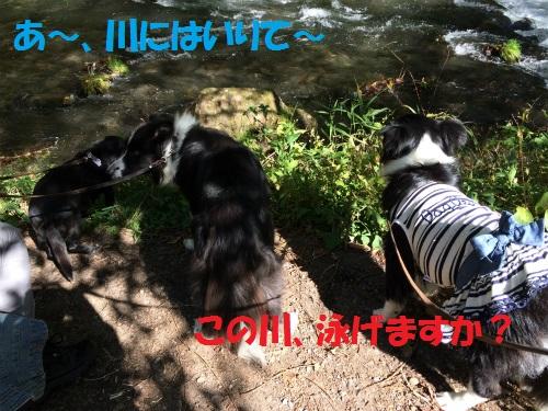 022_20151016235342521.jpg
