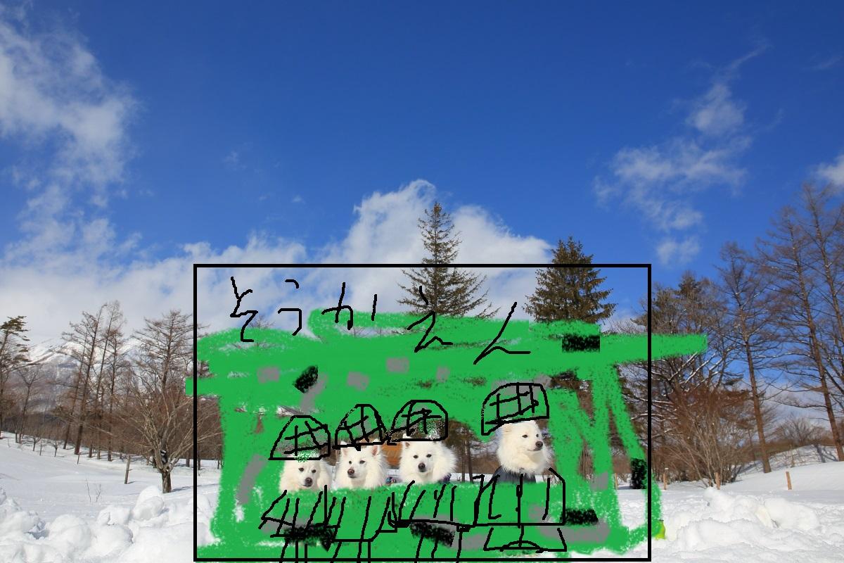 2K5A2372 - コピー (2)