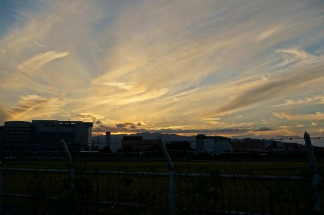 photo_010a.jpg
