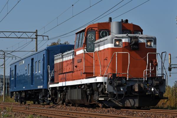 DSC_9170.jpg