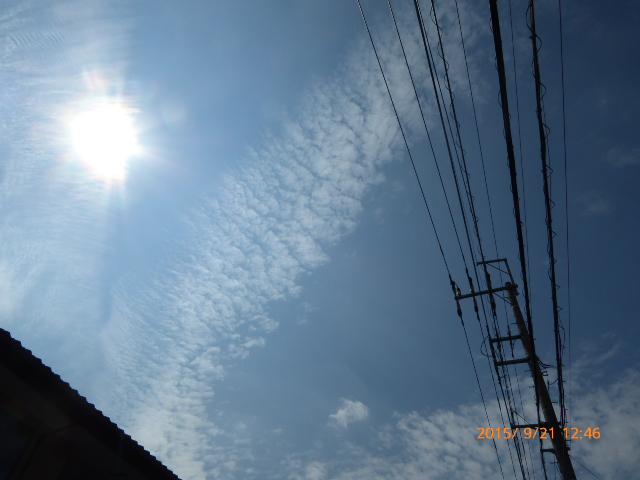 2015_09210022.jpg