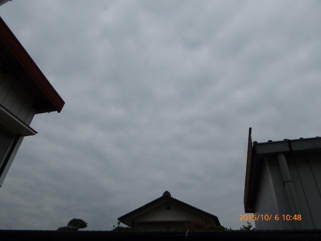 2015_10060019.jpg