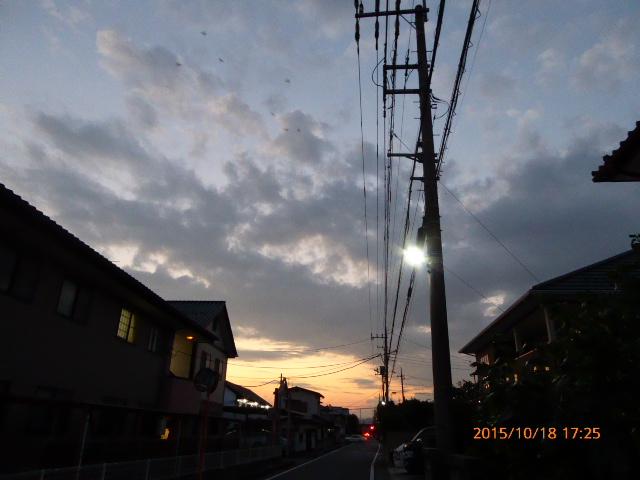 2015_10180026.jpg