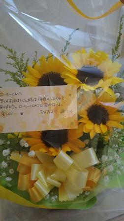 DSC_0132_20150930135821932.jpg