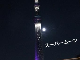 IMG_2426_Fotor.jpg