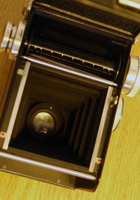 RolleicordV P1050147