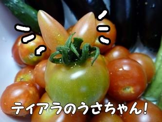 ブログ用002-2015 07 15-173213