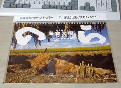 岩合光昭 2016猫カレンダー のら