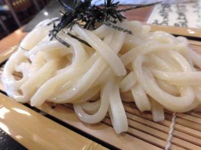 豆だぬき (5)