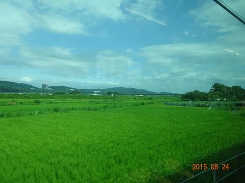 DSC02953小田急線新松田付近田園風景