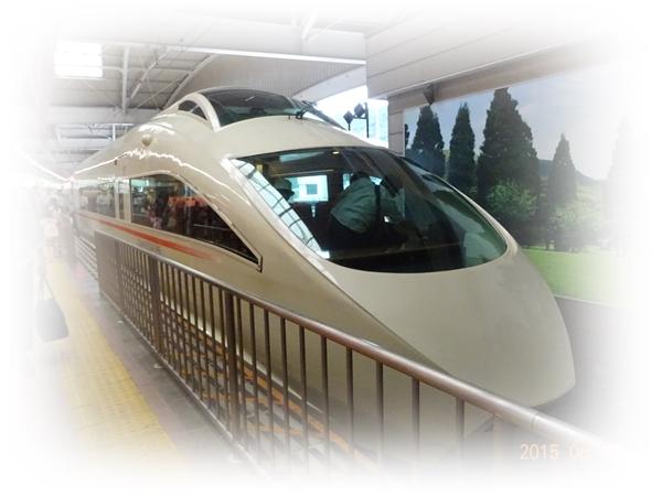 DSC02975湯本駅到着の白いロマンスカー