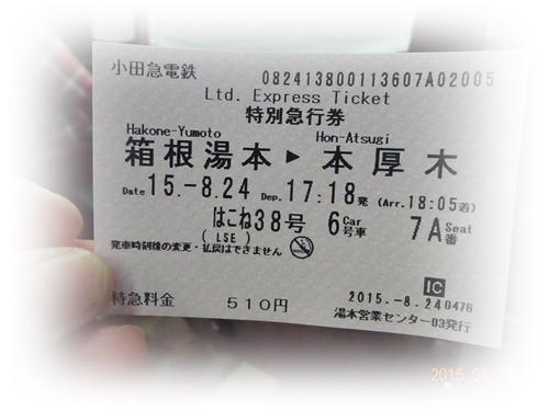 DSC03001帰路ロマンスカー特急券