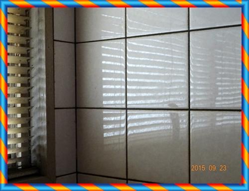 DSC03145ピッカピカの壁