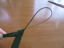 シュロの葉バッタ (5)
