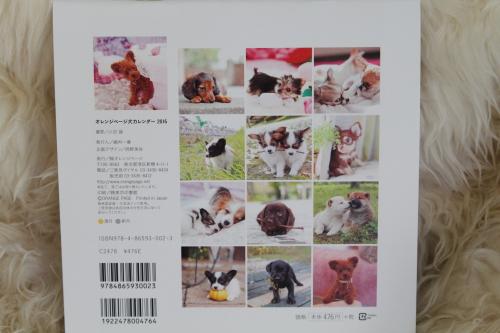 IMG_1985アランくんカレンダー