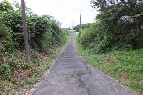 kugahara (12)