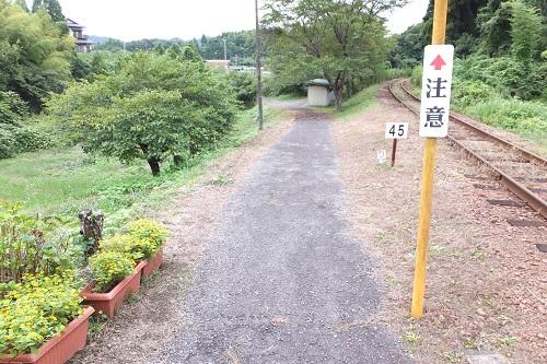 kugahara (11)