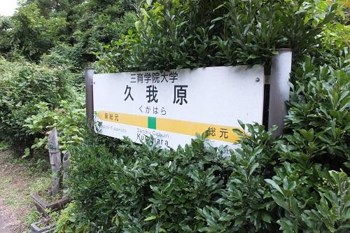 kugahara (8)