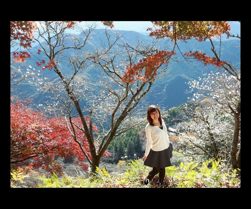 桜山_7949b