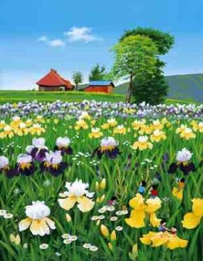 ばあちゃんの花畑