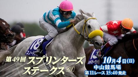 2015年秋のG1シリーズ中央競馬 by占いとか魔術とか所蔵画像