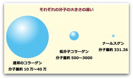 ナールスゲン 分子の大きさの違い
