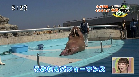 yuwaku151014_15.jpg