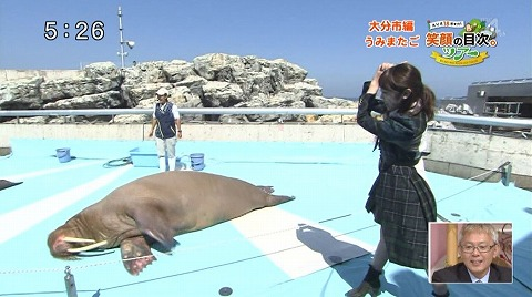 yuwaku151014_17.jpg
