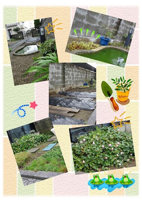 10月中旬の庭a