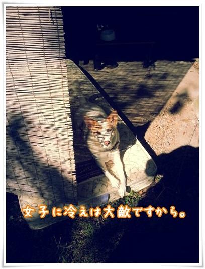 20151007_093324.jpg