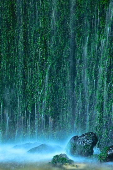 苔の岩壁に飛沫_048