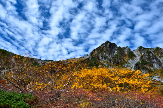 鱗雲と紅葉彩る南宝剣岳