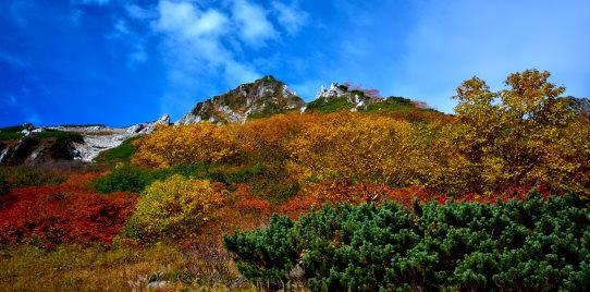 秋色に染まる峰