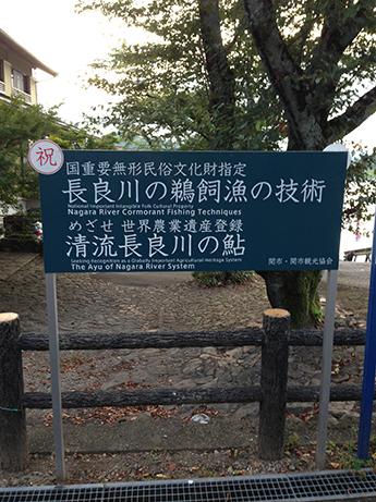 2015 8 17 小瀬鵜飼2