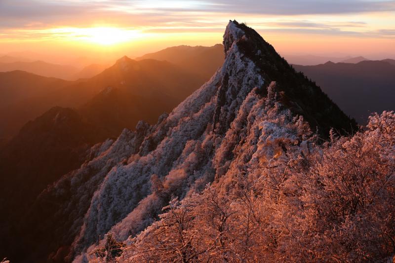 朝陽に輝く霧氷の天狗岳