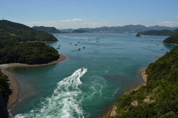 堀越海峡3