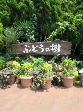 ・ぶどうの樹 入口