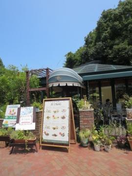 ・森のレストラン