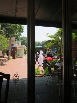 ・窓からの園内 挙式の前撮りでしょうか…