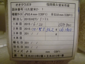 15-2-1 362g管理カード