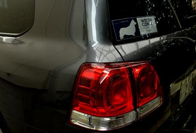 1510洗車