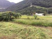 畑(その2)after