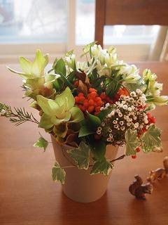 秋のお花で