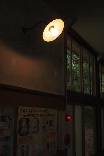 midorinotokeidai-d.jpg