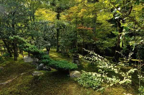 即宗院の庭