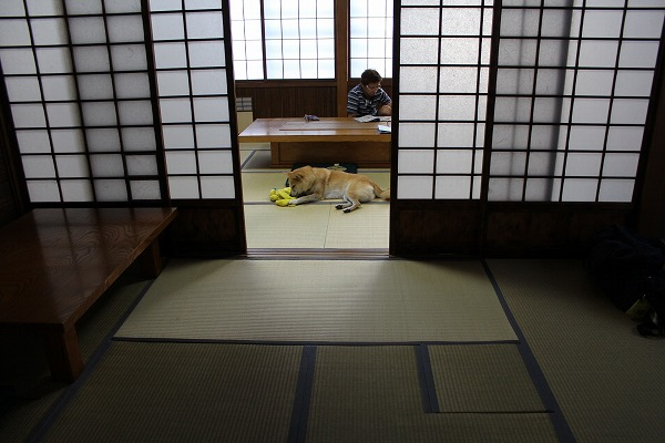 s-matsudaIMG_8777.jpg