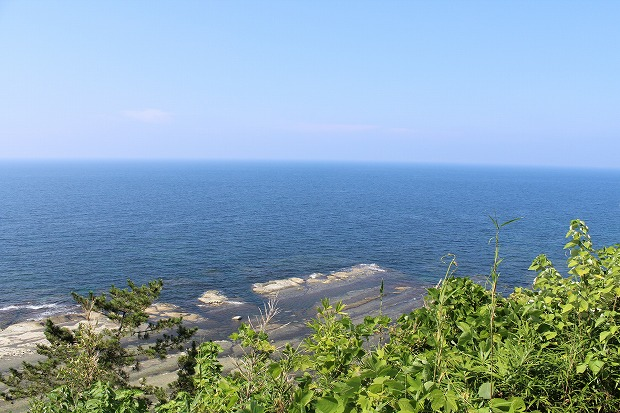 s-toudaiIMG_8768.jpg