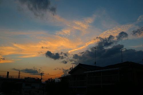 20150904_hisabisanoyuhi_2.jpg